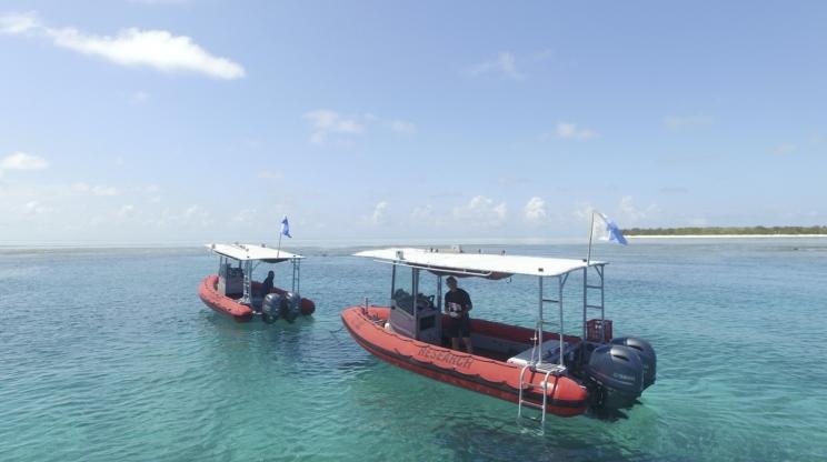 Drone Heron Island